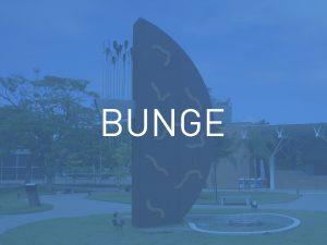 Escultura Bunge (Gaspar)